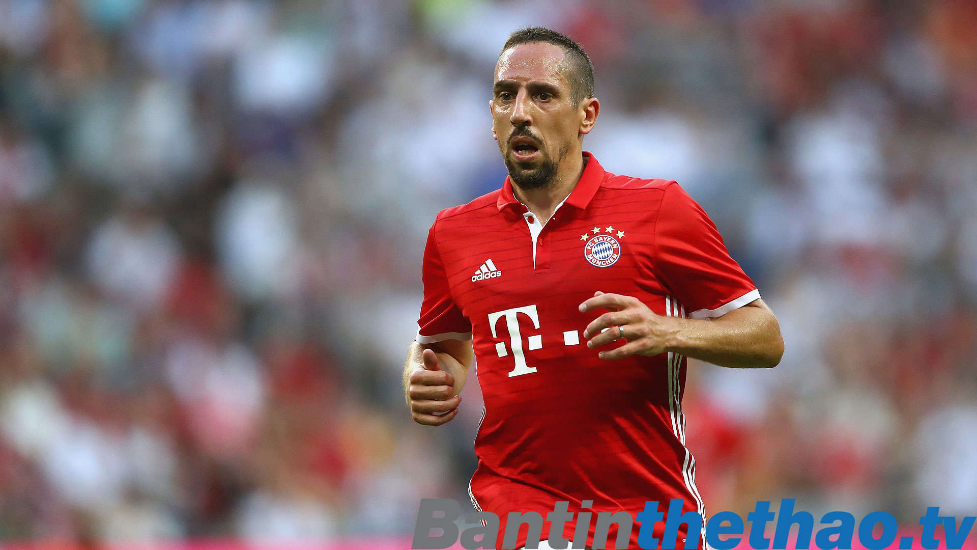 Ribery không hề thiếu tôn trọng Bayer và HLV Ancelotti