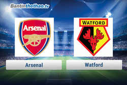 Link xem trực tiếp, link sopcast live stream Arsenal vs Watford tối nay 11/3/2018 Ngoại Hạng Anh