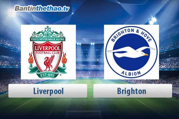 Link xem trực tiếp, link sopcast live stream Liverpool vs Brighton tối nay 13/5/2018 Ngoại Hạng Anh