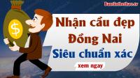 Dự đoán XSDN 9/12/2020 - Soi cầu dự đoán xổ số Đồng Nai ngày 9 tháng 12 năm 2020